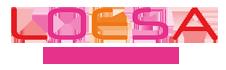 Loesa.nl Logo